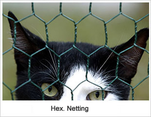 Hex-netting wire fence